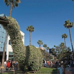 Отель Best Western Royal Palace Inn & Suites США, Лос-Анджелес - отзывы, цены и фото номеров - забронировать отель Best Western Royal Palace Inn & Suites онлайн фото 9
