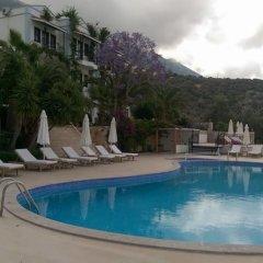 Mediteran Hotel Турция, Калкан - отзывы, цены и фото номеров - забронировать отель Mediteran Hotel онлайн бассейн фото 3
