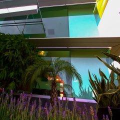 Отель Novit Мексика, Мехико - отзывы, цены и фото номеров - забронировать отель Novit онлайн балкон