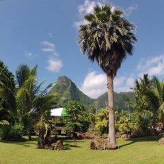 Отель Village Temanoha Французская Полинезия, Папеэте - отзывы, цены и фото номеров - забронировать отель Village Temanoha онлайн