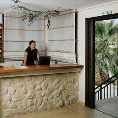 Отель Areti Греция, Ситония - отзывы, цены и фото номеров - забронировать отель Areti онлайн фото 5