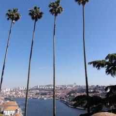 Отель Premium Porto Downtown фото 11