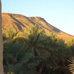 Отель Riad Tagmadart Ferme D'hôte Марокко, Загора - отзывы, цены и фото номеров - забронировать отель Riad Tagmadart Ferme D'hôte онлайн фото 5