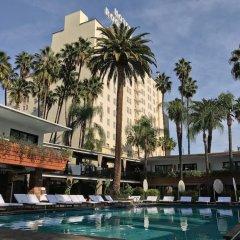 Отель Hollywood Roosevelt Hotel США, Лос-Анджелес - 1 отзыв об отеле, цены и фото номеров - забронировать отель Hollywood Roosevelt Hotel онлайн бассейн