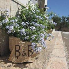 Отель B&B Welcome to Alberobello Альберобелло с домашними животными