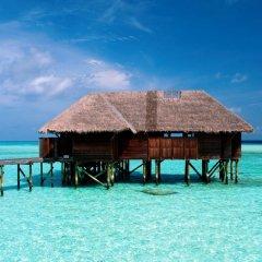 Отель Conrad Maldives Rangali Island 5* Вилла Премиум с различными типами кроватей фото 2