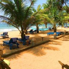 Отель Oasey Beach Resort Шри-Ланка, Бентота - отзывы, цены и фото номеров - забронировать отель Oasey Beach Resort онлайн пляж фото 2