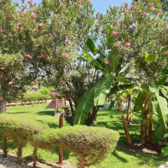 Djeliba Hotel in Kololi, Gambia from 201$, photos, reviews - zenhotels.com photo 9