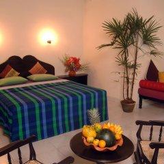 Отель Wunderbar Beach Club Hotel Шри-Ланка, Бентота - отзывы, цены и фото номеров - забронировать отель Wunderbar Beach Club Hotel онлайн комната для гостей фото 5