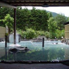 Отель Syouya No Yakata Хидзи бассейн фото 2