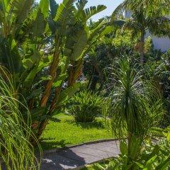 Отель Dorisol Estrelicia Португалия, Фуншал - 1 отзыв об отеле, цены и фото номеров - забронировать отель Dorisol Estrelicia онлайн фото 12