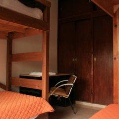 Отель Lion Hostel Мексика, Гвадалахара - отзывы, цены и фото номеров - забронировать отель Lion Hostel онлайн сейф в номере