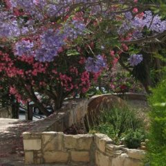 Hill View Restaurant & Apartments in Pissouri, Cyprus from 109$, photos, reviews - zenhotels.com photo 14