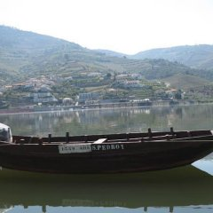 Hotel Folgosa Douro фото 7