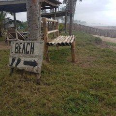 Отель Stumble Inn Eco Lodge Гана, Шама - отзывы, цены и фото номеров - забронировать отель Stumble Inn Eco Lodge онлайн детские мероприятия