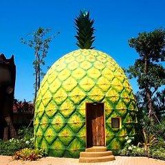 Отель Fruit House Бангламунг фото 3