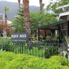 Отель Beachwood Villas фото 17