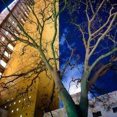Hotel Misión Guadalajara Carlton фото 3
