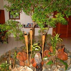 Отель Bedarra Beach Inn Фиджи, Вити-Леву - отзывы, цены и фото номеров - забронировать отель Bedarra Beach Inn онлайн фото 7