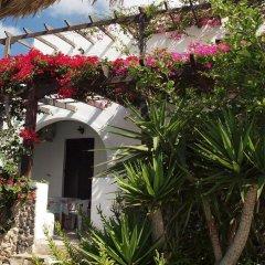 Отель Holiday Beach Resort Греция, Остров Санторини - отзывы, цены и фото номеров - забронировать отель Holiday Beach Resort онлайн фото 4