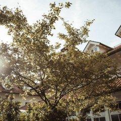 Отель Limmerhof Германия, Тауфкирхен - отзывы, цены и фото номеров - забронировать отель Limmerhof онлайн фото 2
