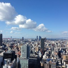 Hotel Nikko Osaka балкон