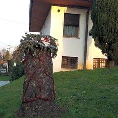 Отель Summer's House Италия, Кастельфранко - отзывы, цены и фото номеров - забронировать отель Summer's House онлайн фото 3