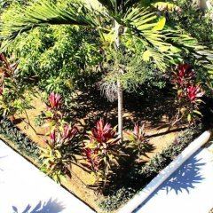 Отель Retreat Guest House Ямайка, Дискавери-Бей - отзывы, цены и фото номеров - забронировать отель Retreat Guest House онлайн
