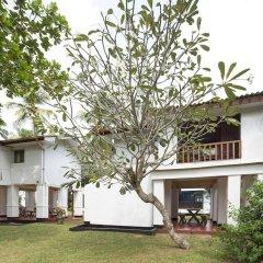 Отель Palm Beach Inn and Sea Shells Cabanas Шри-Ланка, Бентота - отзывы, цены и фото номеров - забронировать отель Palm Beach Inn and Sea Shells Cabanas онлайн фото 10