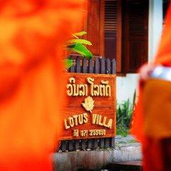 Отель Lotus Villa гостиничный бар