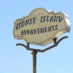 Отель Mouse Island Греция, Корфу - отзывы, цены и фото номеров - забронировать отель Mouse Island онлайн фото 5