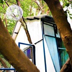 Отель Dao Anh Khanh Treehouse Ханой бассейн