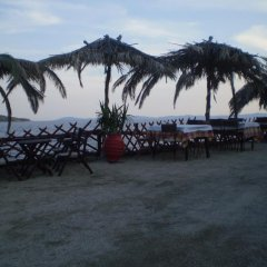 Отель Studios Ioanna Греция, Ситония - отзывы, цены и фото номеров - забронировать отель Studios Ioanna онлайн пляж