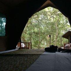 Отель Mahoora Tented Safari Camp - Kumana Шри-Ланка, Яла - отзывы, цены и фото номеров - забронировать отель Mahoora Tented Safari Camp - Kumana онлайн фото 2