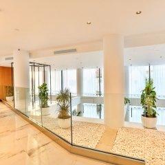 Отель Fagus Черногория, Будва - отзывы, цены и фото номеров - забронировать отель Fagus онлайн интерьер отеля фото 2