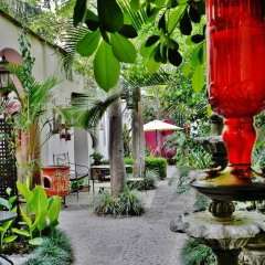 Hotel Rosa Morada Bed and Breakfast фото 4