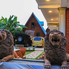 Отель Yoho D Family Resort с домашними животными