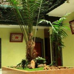 Отель Kandyan Arts Residency Канди интерьер отеля фото 3