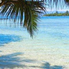 Отель Enjoy Villa Lagoon 4 Французская Полинезия, Папеэте - отзывы, цены и фото номеров - забронировать отель Enjoy Villa Lagoon 4 онлайн пляж фото 2
