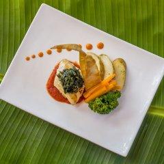 Отель Geejam Ямайка, Порт Антонио - отзывы, цены и фото номеров - забронировать отель Geejam онлайн питание фото 3