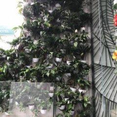 Nature Hotel балкон