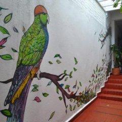 Отель Hostal Pajara Pinta с домашними животными