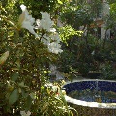 Отель Casa de las Flores Мексика, Тлакуепакуе - отзывы, цены и фото номеров - забронировать отель Casa de las Flores онлайн фото 12