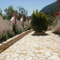 Отель Skevoulis Studios Греция, Корфу - отзывы, цены и фото номеров - забронировать отель Skevoulis Studios онлайн фото 25