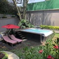 Отель Pug Seal B&B Coyoacan Мексика, Мехико - отзывы, цены и фото номеров - забронировать отель Pug Seal B&B Coyoacan онлайн фото 5