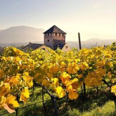 Schloss Hotel Korb Аппиано-сулла-Страда-дель-Вино фото 7