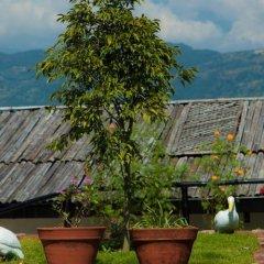 Отель Raniban Retreat Непал, Покхара - отзывы, цены и фото номеров - забронировать отель Raniban Retreat онлайн фото 6