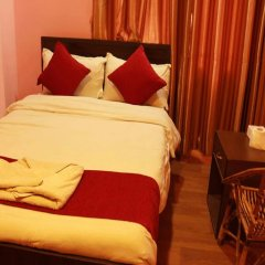Отель Dali Nepal Непал, Катманду - отзывы, цены и фото номеров - забронировать отель Dali Nepal онлайн комната для гостей фото 4