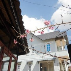 Отель Reveto Dalat Villa Далат фото 3