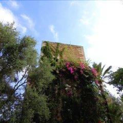 Отель Villa Son Xona фото 13